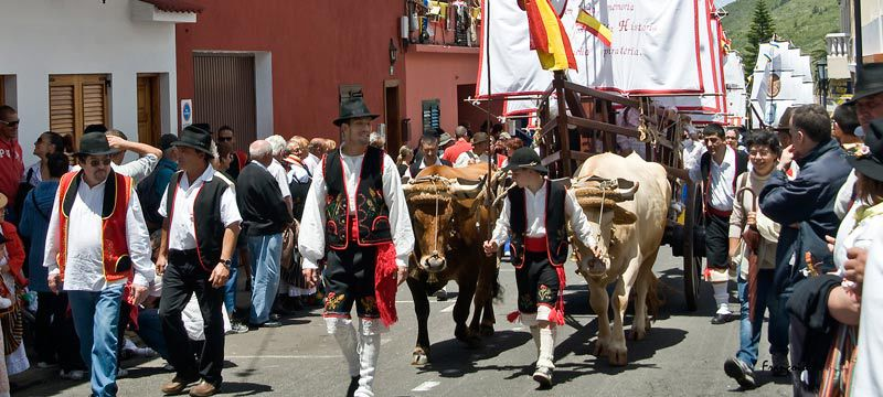 Romeria / Photo: FU International